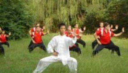 Гимнастика Тай-цзи