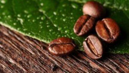 Кофе влияет на риск болезней Альцгеймера и Паркинсона