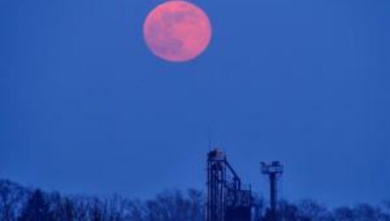 Над Землей взошла розовая Луна