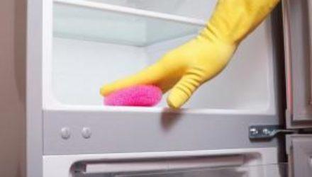 Избавляемся от плесени в холодильнике: все основные рекомендации