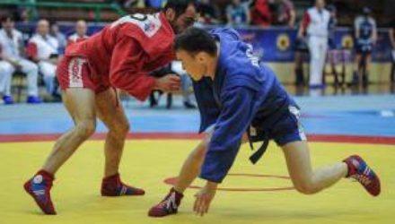 Украина выиграла чемпионат мира по боевому самбо, проходивший в Твери