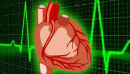 Врачи назвали самый опасный для сердца и сосудов продукт