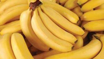 Диетолог объяснила, почему бананы полезны для нервной системы