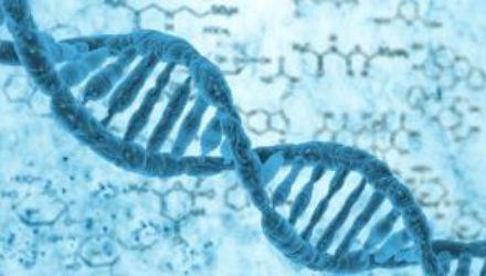 Ученые выяснили причину возникновения рака кожи у пациентов с «синдромом бабочки»