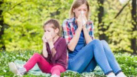 Третья волна аллергии в Украине – что делать