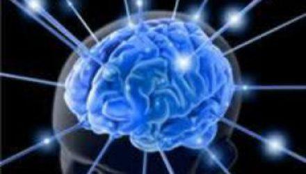 Ученые: язык общения влияет на мышление человека