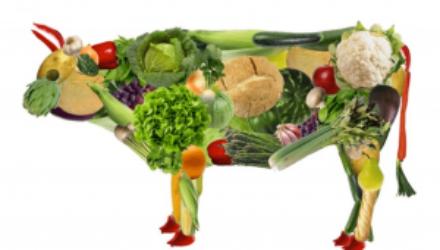 Исследование: вегетарианки становятся полными и несчастными